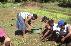 Spargruppe Madagaskar Tsinjo Aina Boeny