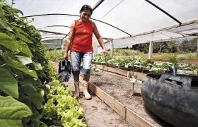 Lisete Aleixo Monteiro giesst Salatpflanzen im selbst gebauten Gewaechshaus.