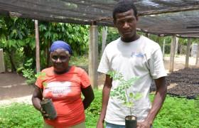 Frau und Mann in einer Baumschule