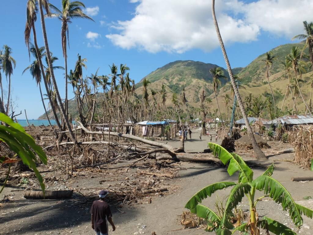 Die Menschen wissen sich zu helfen: Die Überreste der Zerstörten Bäume und Palmen verwenden sie als Baumaterial...