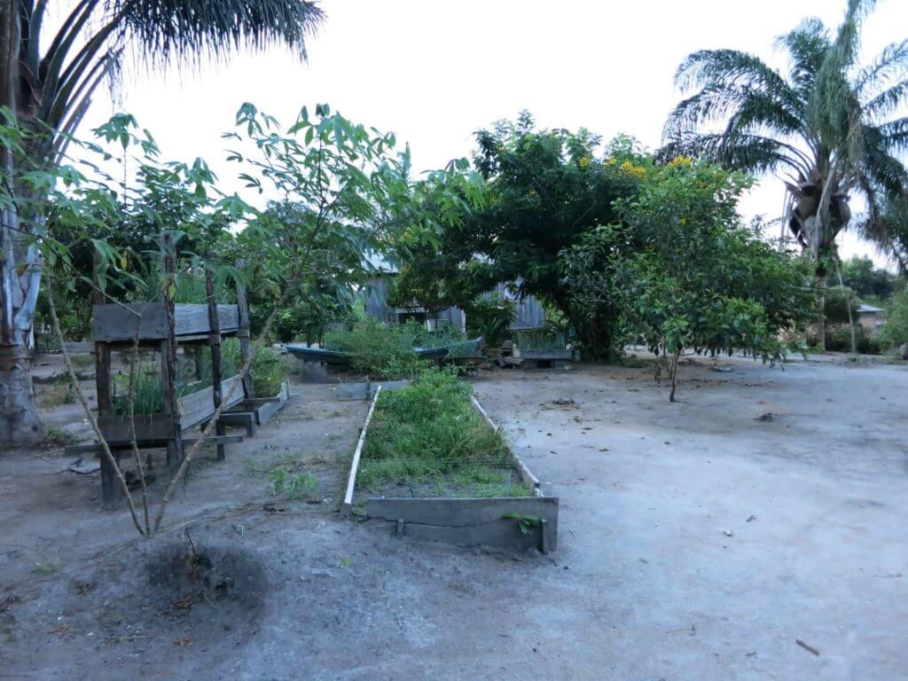 ...und vom Anbau von Produkten wie Maniok, Bananen und Gemüse.