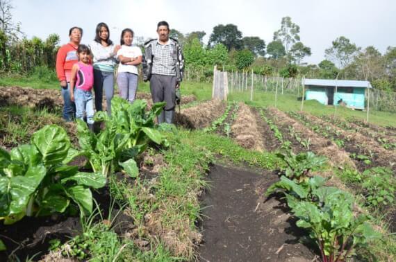 Kolumbien, Semillas de Agua