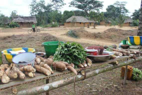 kongo%20caritas%20kole%202014%20fo%200019