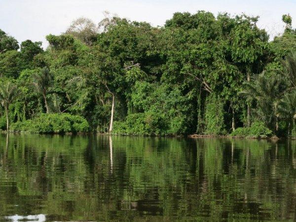 Brasilien Projekt CPISP, Amazonasgebiet. Bild: Fastenopfer