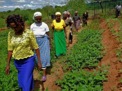 Frieden für Massai