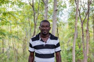 Wiederaufforstung in Haiti