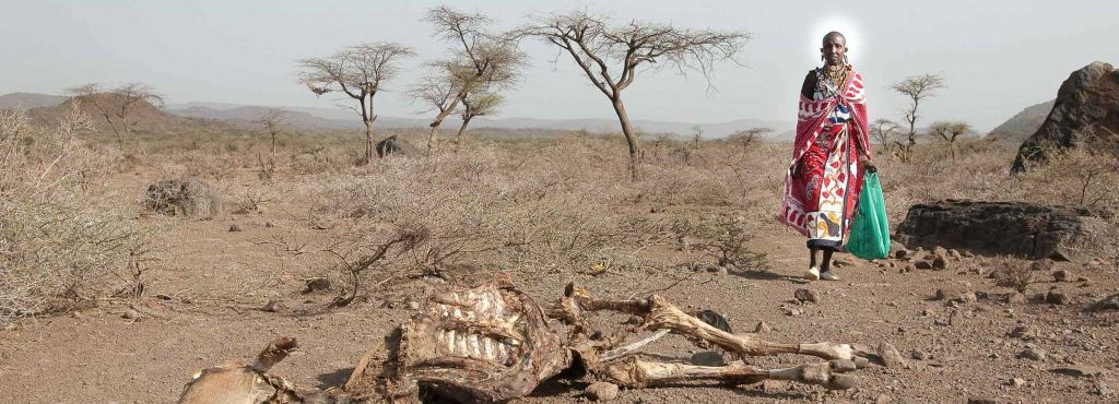 Klimagerechtigkeit I Helfen Sie Bäuerinnen und Bauern weltweit