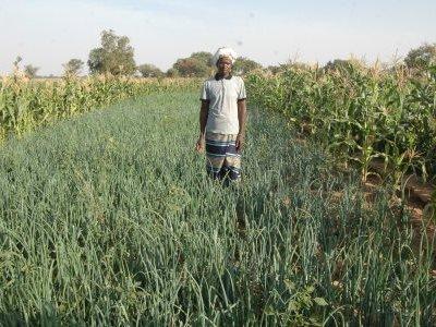 Burkina Faso ADIF