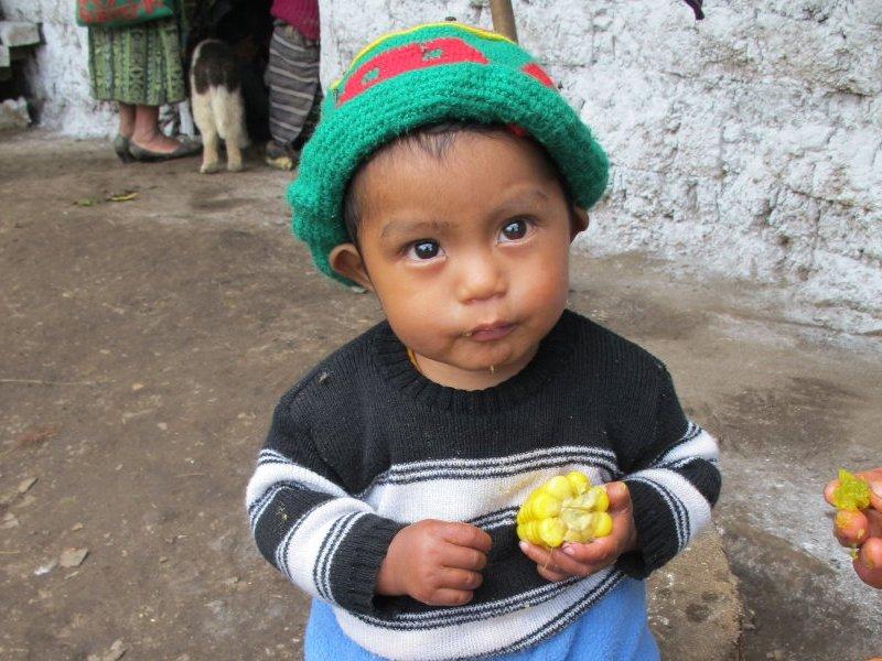 Guatemala AMMID