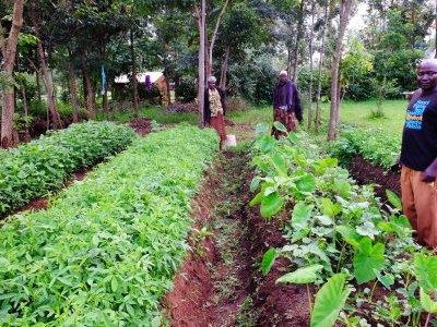 Kenia KCWEP